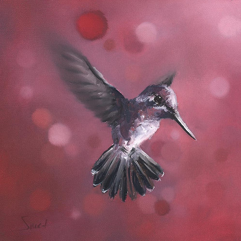 Pink Hummingbird Oil Painting