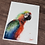 Thumbnail: Macaw Parrot Watercolor Print