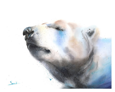 Polar Bear Watercolor Print