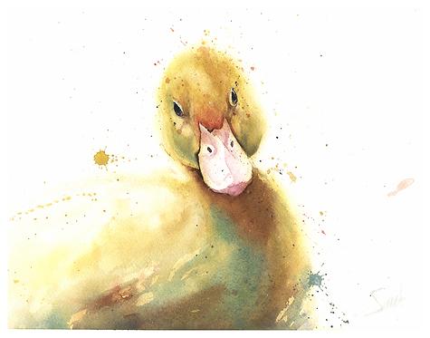 Duckling Watercolor Print