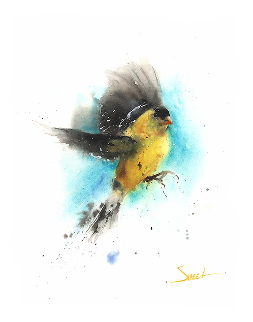 Goldfinch Watercolor Print
