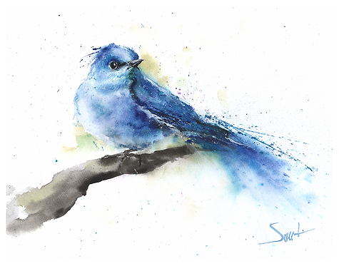 Northern Bluebird Watercolor Print