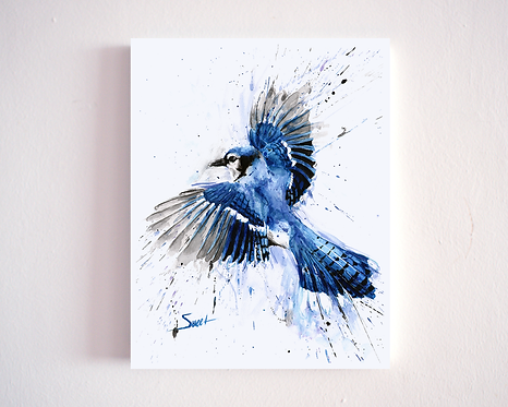 Blue Jay Watercolor Print