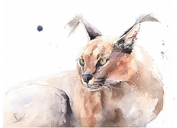 Zari Caracal Original Watercolor Painting