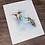 Thumbnail: Rufous Hummingbird Watercolor Print