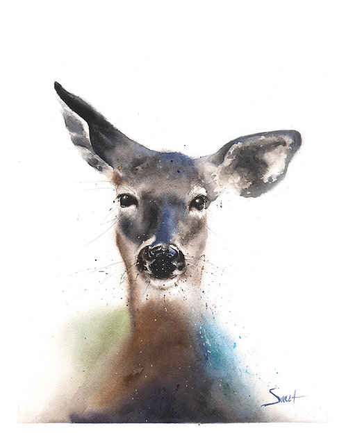 Doe Deer Watercolor Print
