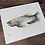 Thumbnail: Trout Fish Watercolor Print
