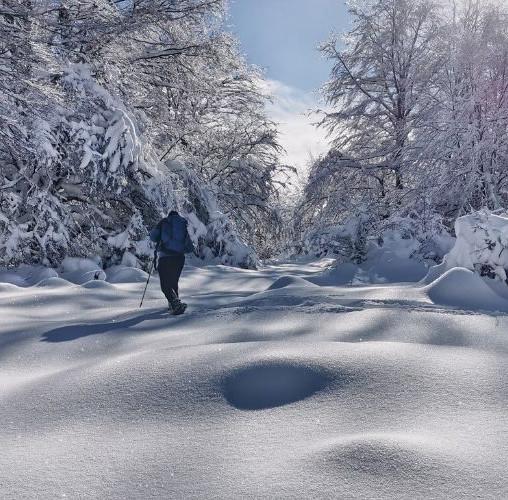 7 consejos imprescindibles para hacer rutas en Raquetas de Nieve por Picos de Europa
