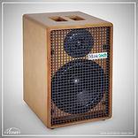 Musictech MT120 hout.jpg
