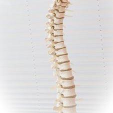 sciatica spine numbness legs