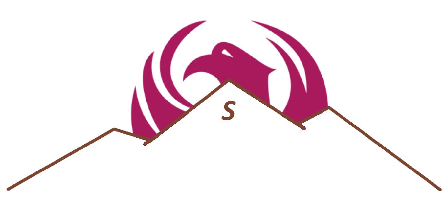 ESSNA Logo