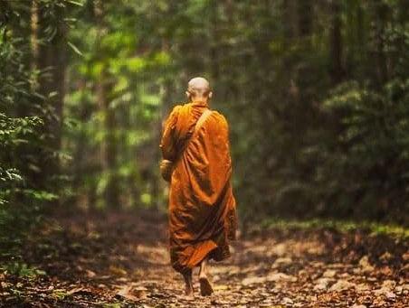 Осознанная ходьба