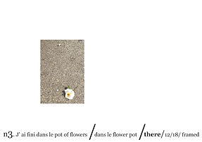 j'ai fini dans le flower pot-03.jpg