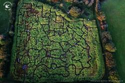 Hendrewennol Maze of Wales
