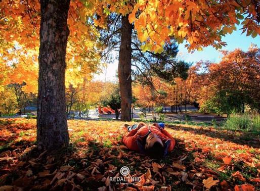 Autumn: Ifrane's Secret Season