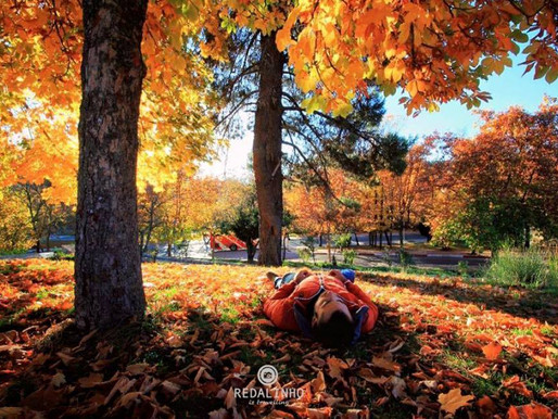 Autumn: Ifrane's Secret Season