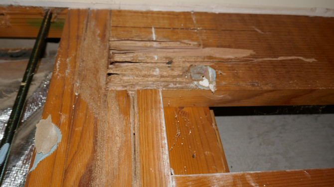 Termite Damage in Homes for Sale