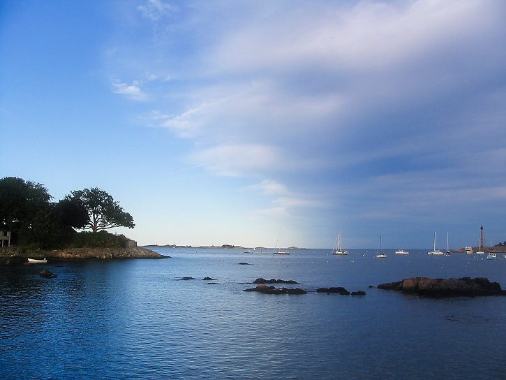Martha's Vineyard Harbor .jpg