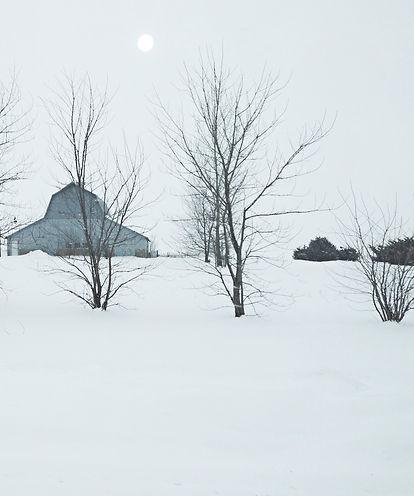 Snow Barn1a Illinois .jpg