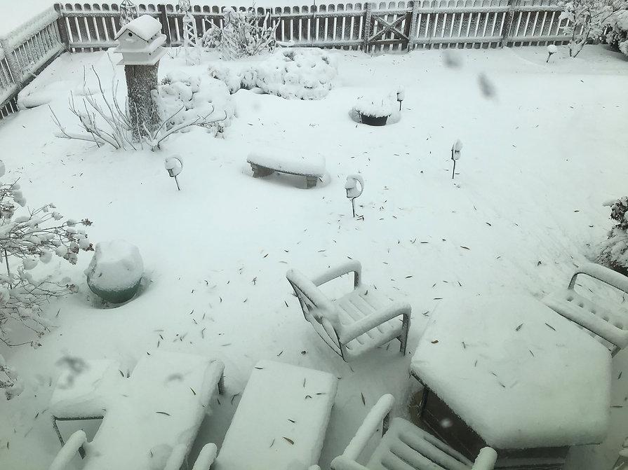 Snow Day Illinois .jpg