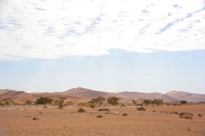 2019, Sossusvlei3 Namibia .jpg