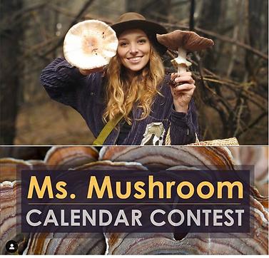 ms. mushroom.png