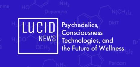 lucid news.jpg