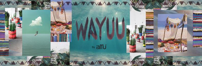 wayuu collection