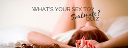What's your sex toy soulmate