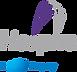 Hospira - A Pfizer Company