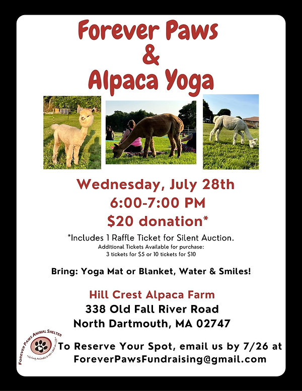 Forever Paws & Alpaca Yoga. JPEG.jpg