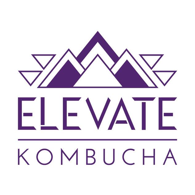 Elevate Kombucha 2.jpg