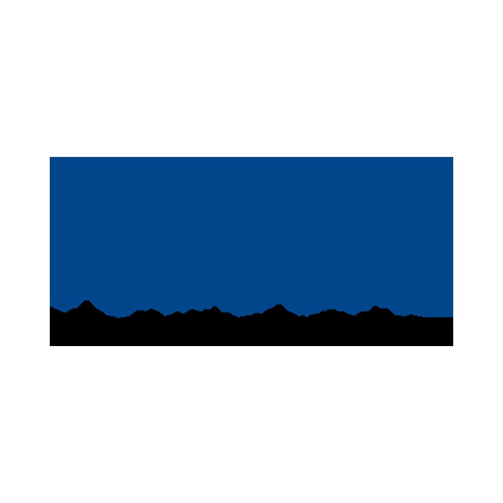 Noda Logo Website