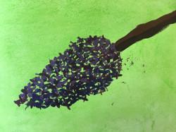 La branche de lilas