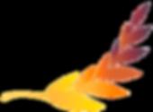 Logo parcial colorida - AMUN.png