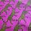Thumbnail: CheetahGirl