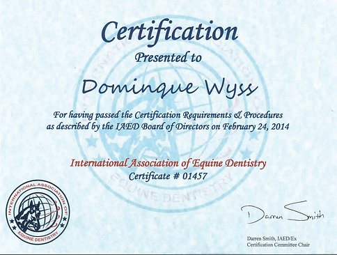 Certification IAED.png