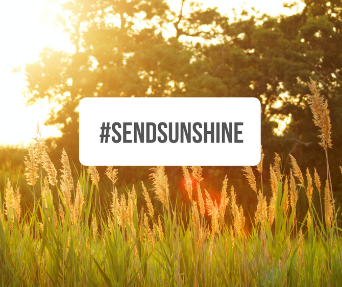 THIS SUMMER, SEND SUNSHINE