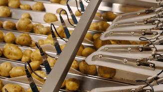 De Aardappelhoeve