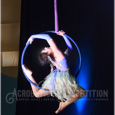 10 aerial hoop adults begginers-6697.jpg