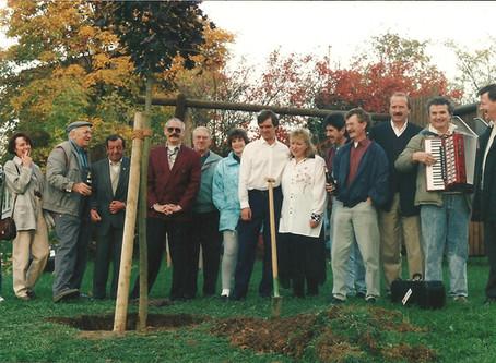 Unser TTC-Baum hat Geburtstag