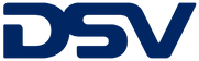 DSV_Logo BLUE.png