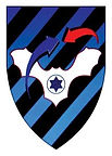 air-defence unit logo