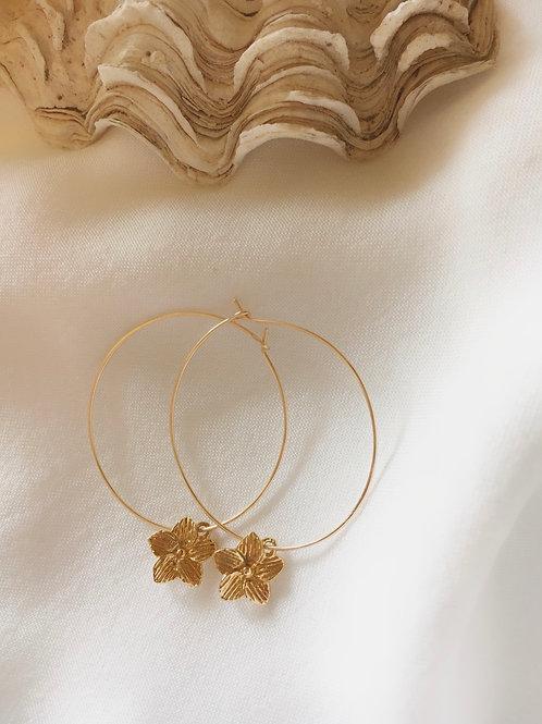 עגילי חישוק גולדפילד דקיקים פרח
