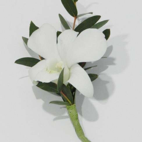 Annet Fleuriste M42