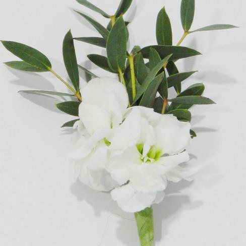 Annet Fleuriste M27
