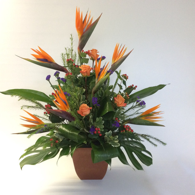 Annet Fleuriste S12