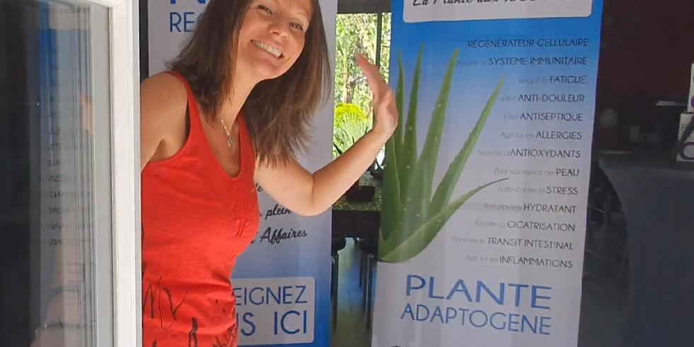 Aloe : Portes ouvertes Virtuelles