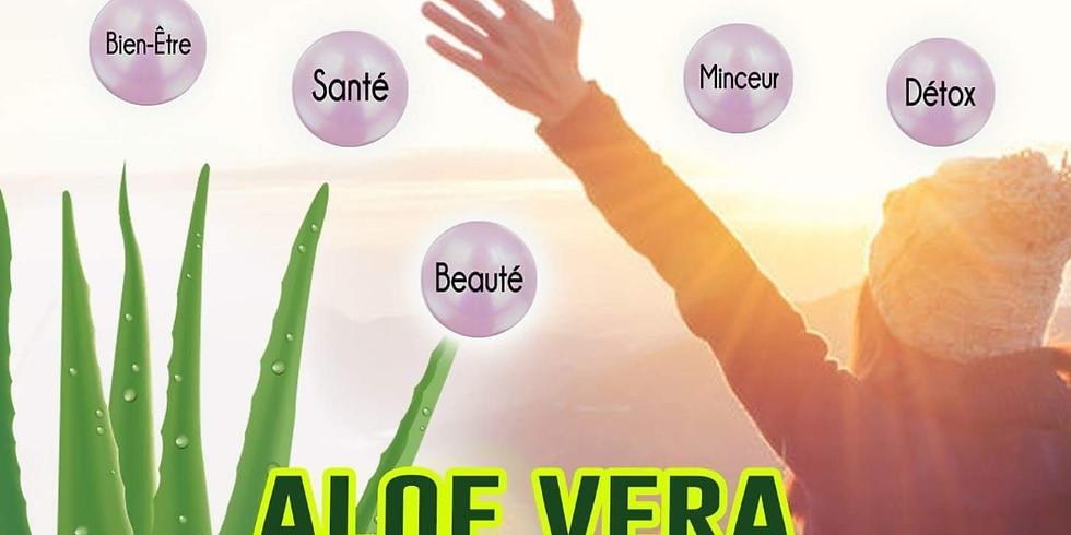 Saint Michel /Loire - Aloe Vera et ses vertus + At Soin Visage