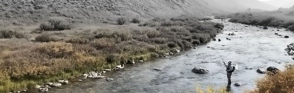 tate-fly-rod-site-walker-stream.jpg